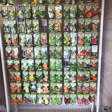 Vente de végétaux à Saint-Aubin-de-Médoc - Picot Déco Jardin (3).jpg